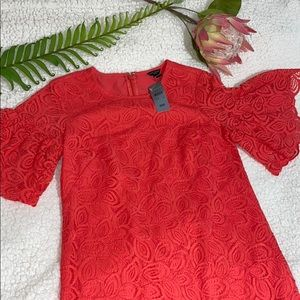 Ann Taylor coral red leaf lace dress NWT 00P new